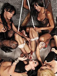 Shemale Punishers 14